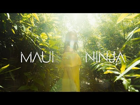 "The Green - ""Maui Ninja"" (Lyric Video)"