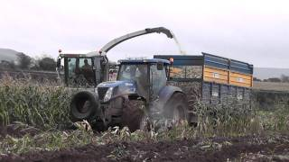 killens bogged 2