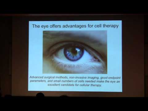 "P-SPAN #411: ""Treating Blindness with Stem Cells"""
