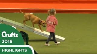 クラフツに新たなスター誕生?4歳の女の子が、愛犬といっしょに競技場を力いっぱい走り抜けた