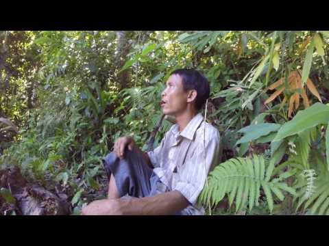 Arriving | Real-Life Tarzan (1/11)