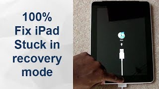 iPad Pro Stuck in Recovery Mode? Fix it with ReiBoot. No Factory Reset! No Restore!