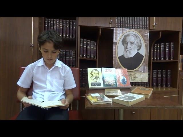 Изображение предпросмотра прочтения – МаркМазий читает произведение «Близнецы» И.С.Тургенева