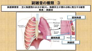 異常呼吸音副雑音に関する知識!? ~No 73 理学療法士国家試験対策 シリーズ~