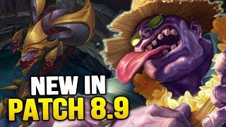 New in Patch 8.9 - Big Baron & Mid Lane Changes! (League of Legends)