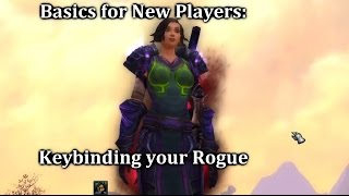 Basics for New Players: Keybinding Your Rogue