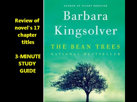 The Bean Trees by Barbara Kingsolver -- 17 chapters reviewed = Taylor Turtle Estevan Mattie Lou Ann