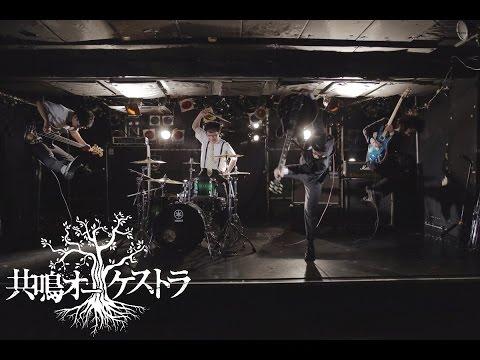 共鳴オーケストラ - クリームソーダ(Official Music Video)