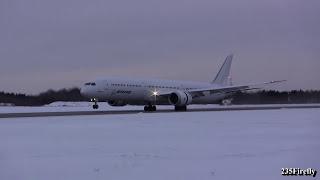 Boeing 787-10 - Landing