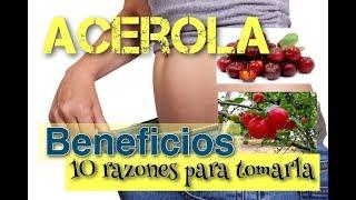 Acerola beneficios: 10 razones probadas para tomar este fruto