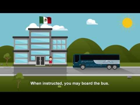 Crossing The United States And Mexico Border With Greyhound