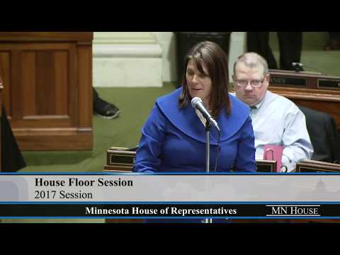 House Floor Session - part 5  5/21/17