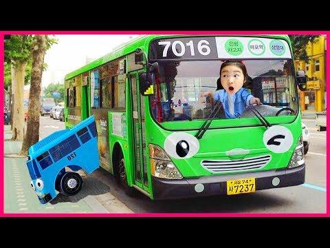 [타요랑 로기버스 타기]타요 보람 놀이터에서 물놀이해요 포크레인 꼬마버스타요 천하장사중장비 최고의중장비 자동차송 타요오프닝 Tayo Bus in Real Life 보람튜브