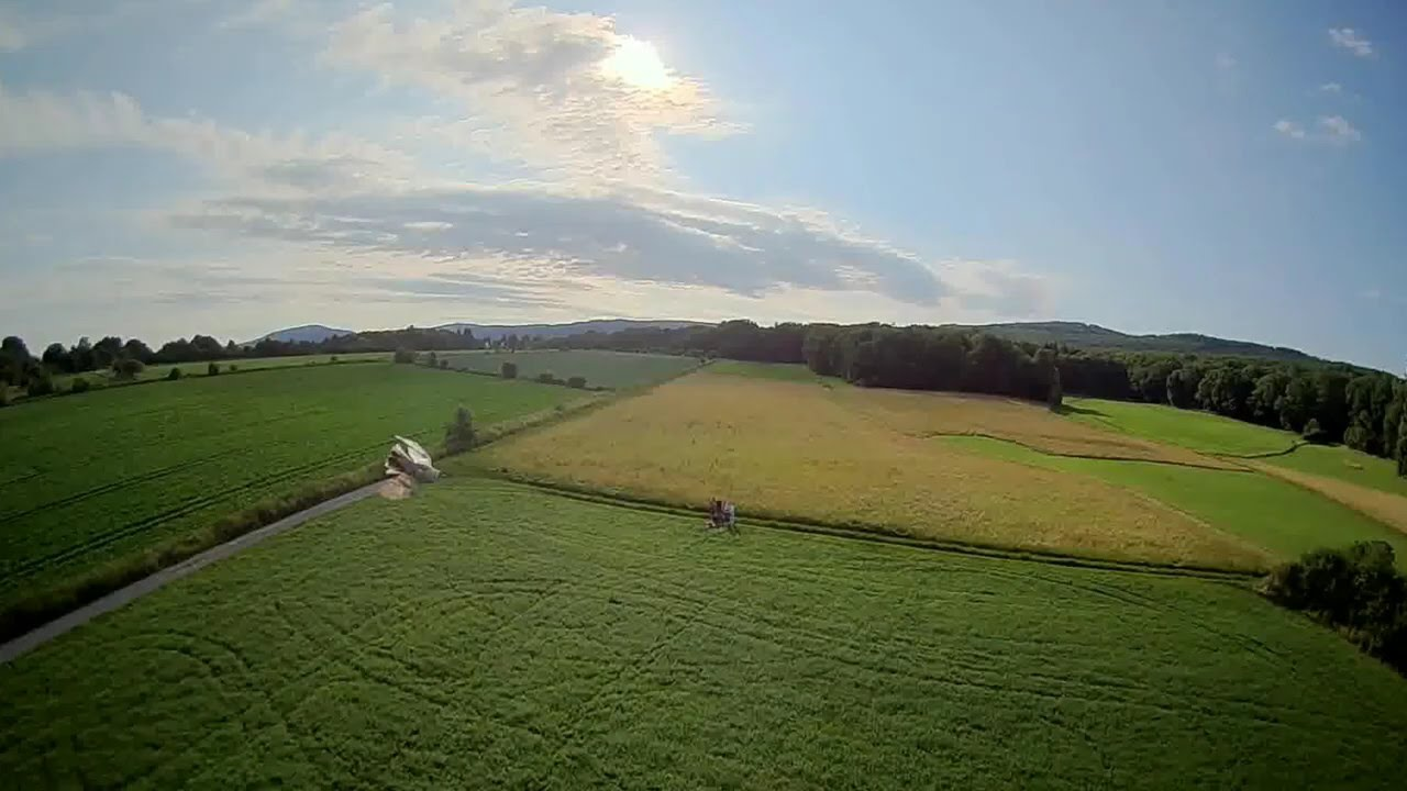 Bird almost crashed into my 220g drone! #fpv #drone #dronefails фото