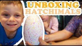 HATCHIMALS UNBOXEN !! - KOETLIFE EXTRA