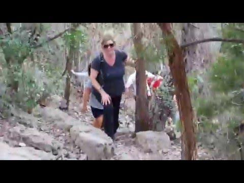 Friedrich hike