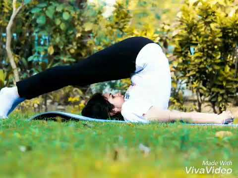 best yoga poses for women weight loss  flexibility