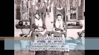 LOS GANDULES - 02 - Matorral Genealógico (Tardes de Meriend...