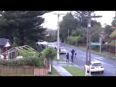 Police fire shot during attempted arrest - Mangere  Auckland  Nov 07 2013