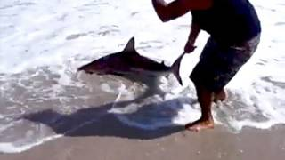 BIG GAME BEACH FISHING