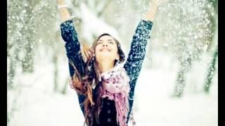 Приключения Электроников -- Снежинка
