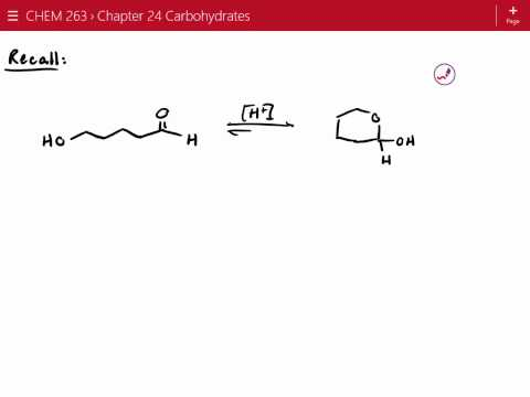 Nitrogen Heterocycles and Introduction to Carbohydrates