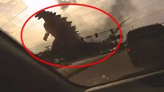 5 Godzilla Caught On Camera & Spotted In Real Life!