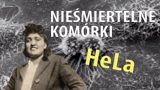 Nieśmiertelne komórki Henrietty Lacks   Ale Historia odc. 145