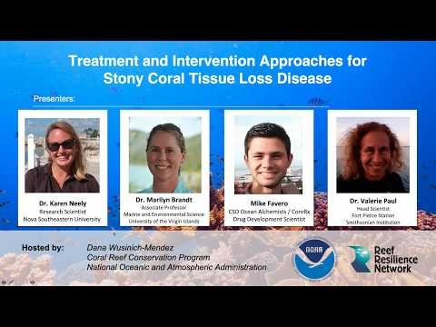 Treatment and Intervention Approaches for Stony Coral Tissue Loss Disease