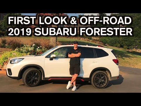 First Look And Off Road Drive 2019 Subaru Forester On Everyman