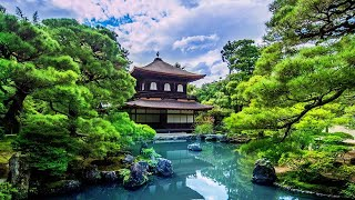 3 hours relaxing music japan traditional instrumental flute for meditation yoga massage spa