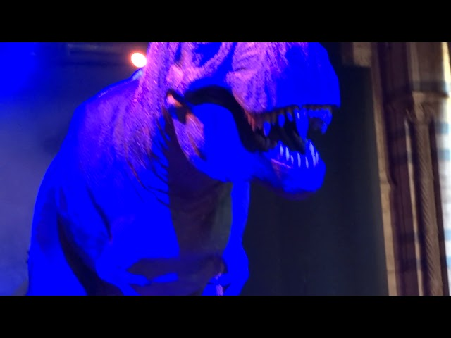 Лондон 5 - T. Rex