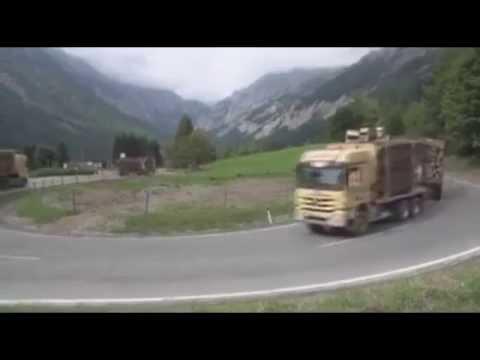 Furt de lemne   Romania trezeste te