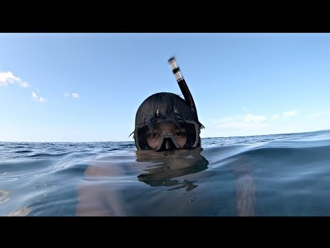 Freediving At Electric Plant In Hawaii! (You Wont Believe Whats Out There)