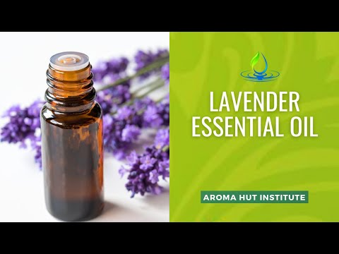 lavender-essential-oil-benefits-and-uses
