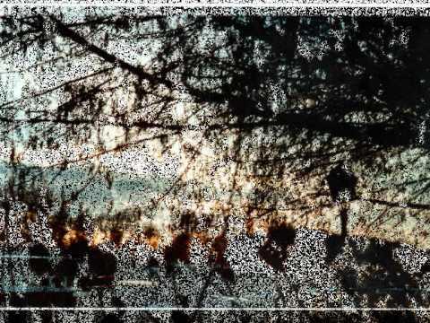 Download PHOTOGRAPHIES d'OUTRE-TEMPS.wmv