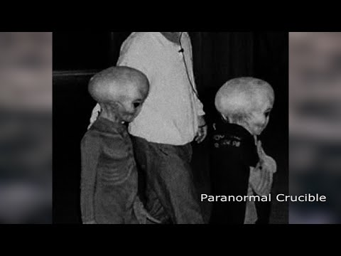 LEAKED: Best Ever Alien Evidence Released?