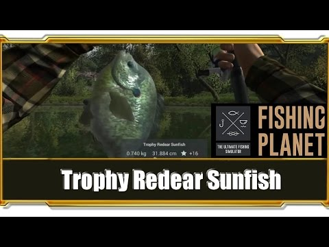 Full download fishing planet farm flathead catfish for for Fishing planet ps4
