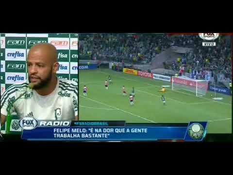 Palmeiras notícias Fox Sport Rádio