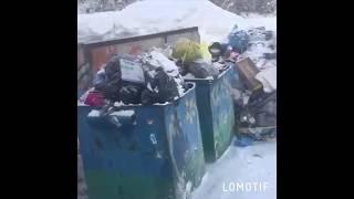Мусорный флешмоб в Железногорске. Ответ на мусорную реформу.