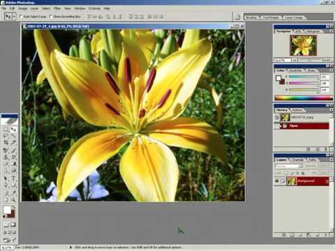 Photoshop Создание акварельного рисунка из фотографии