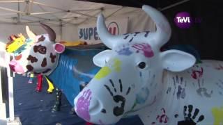 11ème Festival de la Viande à Torigni-sur-Vire
