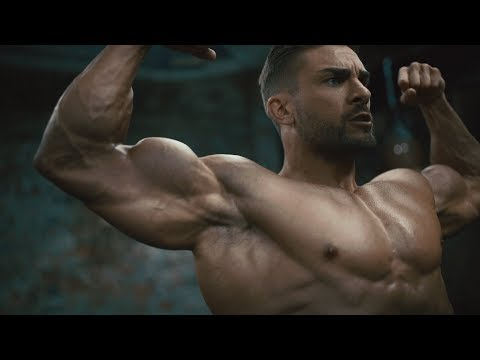 OLYMPIA WINNING ARMS | NEIL HILL | WILLIAM BONAC | RYAN TERRY