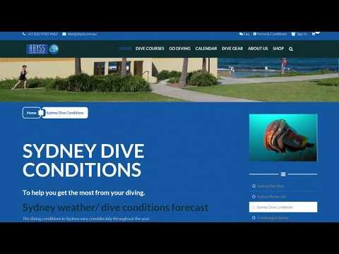 Sydney Dive Conditions