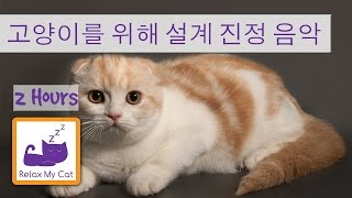 편안한 음악과 함께 당신의 고양이를 달래 - 당신의 고양이가 잠을 도와주세요!