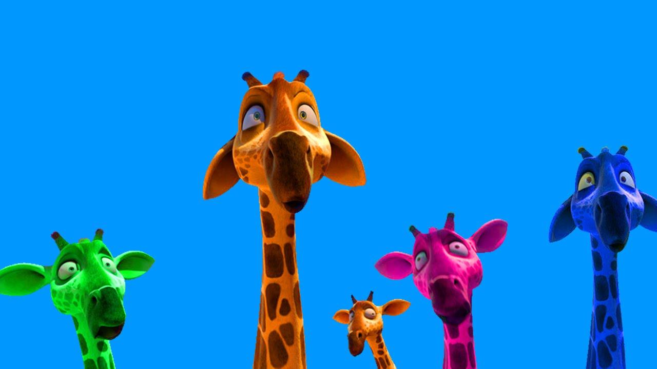 giraffe drawing animation shrek animation videos for kids lion