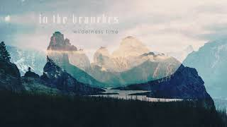 In The Branches - Wilderness Time (2016) - Ambient Guitar / Full Album with Booklet Visuals