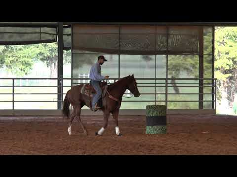 Brandon Cullins   Starting Your Horse On The Pattern