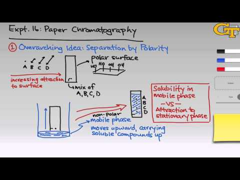 Paper Chromatography | Intro & Theory