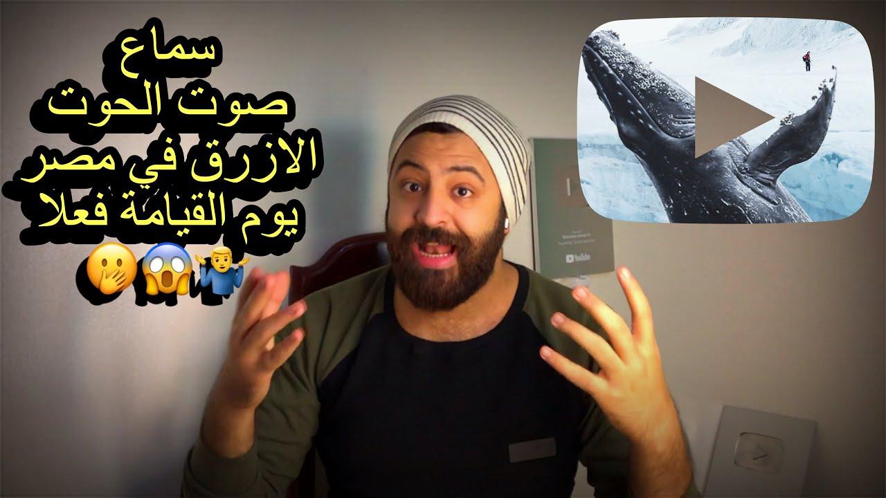 صوت الحوت الأزرق في مصر وليبيا هل ده معناه يوم القيامة فعلا واسباب ظهور تلك الأصوات Youtube